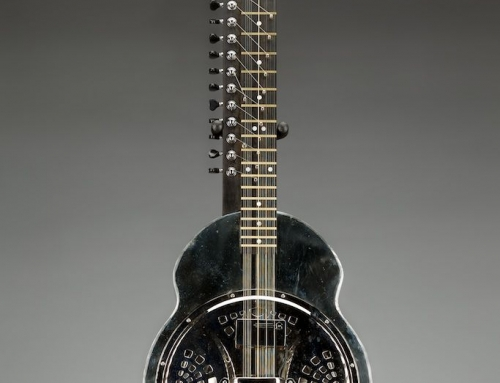 20 string Veena with German silver full body, 25″ scale